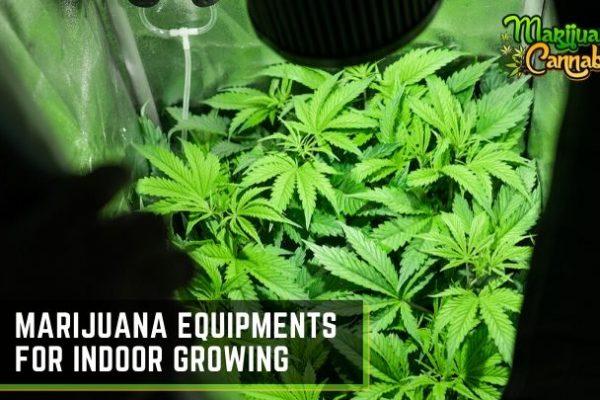 marijuana-indoor-growing-equipments