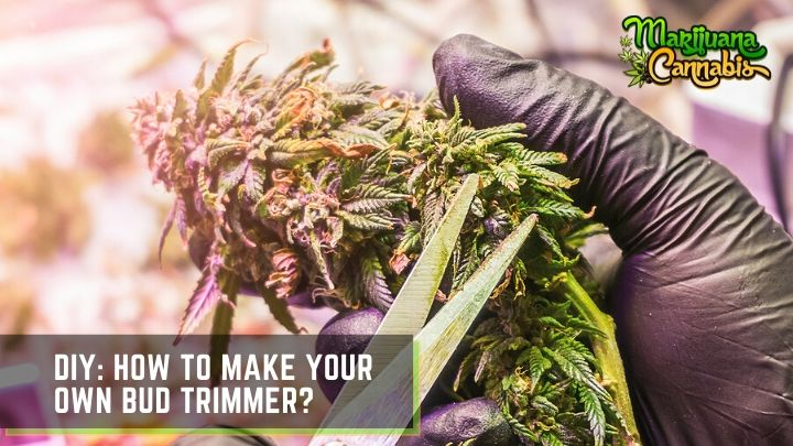 diy-bud-trimmer