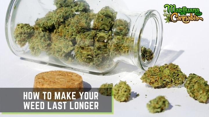 How-to-Make-Your-Weed-Last-Longer